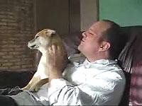 柴犬が可愛くて仕方がない外人さん