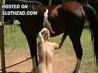 【リンク切れ】【獣姦】馬のペニスがアナルにほしーの♪