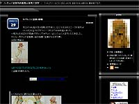 20081031-1s.jpg