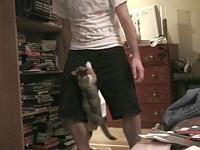 イケメンお兄さんが子猫に股間を襲われて感じちゃう