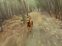 犬の機動力すげぇ!自転車の疾走についてくる犬