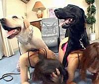 お金のために犬と交尾する女たち