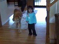 飼い犬に翻弄される幼女が可愛い