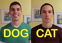 犬のような男友達vs猫のような男友達