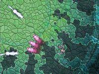 WIZLAND ARENA 闘技場で魔術師が戦うバトルアクションゲーム