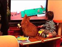 衝撃のラスト!?ピタゴラスイッチを一緒に見ている赤ちゃんと猫!