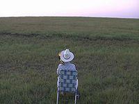 大草原で1人野外フェス!観客は...牛。