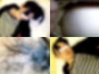 DIGITENTSの睡眠レイプ動画がヤバすぎるwww