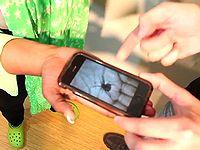 蜘蛛が手のひらを這うスマホアプリでイタズラしたらマジギレされたでござる・・