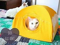 家にある物で簡単に作れてしまうエコな猫テント♪