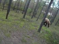 うわあああ!サイクリング中に熊に出会い追いかけられる恐怖映像!