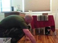 兵士が長期任務から家に戻った時の猫の反応をご覧ください