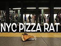 ピザを咥えたネズミ型ラジコンをニューヨークの街中で走らせるイタズラドッキリ