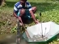 遭難した時も使える!?珍しい方法で魚を捕まえてる人々