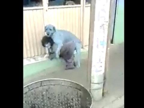 犬にレイプされそうになっている小人症の男性