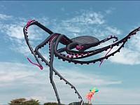 まるでCGのような不思議映像!巨大な蛸の形をした巨大凧
