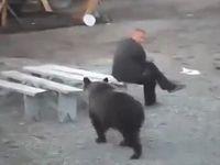 野生のクマを気迫と眼力で撃退するオッサンが強すぎるwww