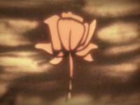 【アニメ】17世紀の悲劇が砂アニメになった「The Rose of Turaida」