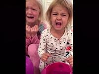 【2016】親から「ハロウィンのお菓子を全部食べちゃった」と言われた子供の反応【総集編】