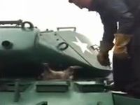 戦車に忍び込もうとして抜け出せなくなったアライグマがマヌケすぎるwww