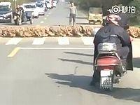 中国に出没した20000羽のアヒルの横断が凄まじすぎるwww