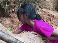 覚えておけば遭難した時に助かる!?魚やカニを特殊な道具なしで捕まえる方法(カンボジア)