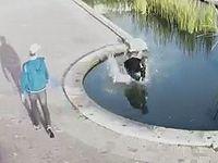 前方不注意!歩きスマホの危険性がよくわかるハプニング映像集