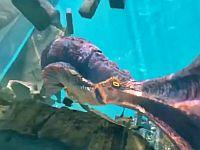 【VR】潜水艇を襲ってくる海の怪物クラーケン!