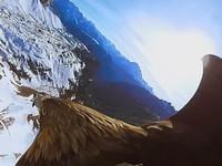 【VR】鷲の翼を借りてアルプス山脈をひとっ飛び!