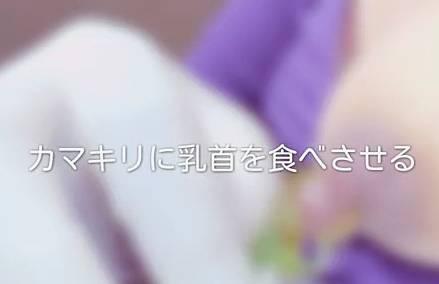 【閲覧注意】カマキリに自分のデカ乳首を食べさせてみたよ♪