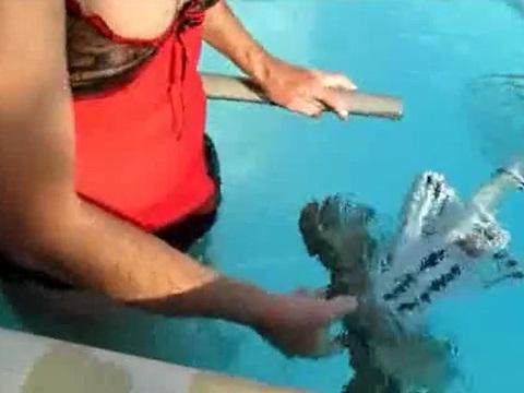 女装男がプール専用の掃除機でオナニー