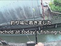 家の中からルアー釣りをしてみた結果wwww
