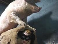 豚の射精量がスゴすぎる!マ●コにたっぷりと豚ザーメンを中出しされるお姉さん