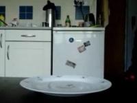 【閲覧注意】お皿にウ●コをひり出して平気な顔で食うスカトロ男