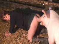【獣姦】犬!豚!馬!あらゆる動物とアニマルファックする女の