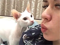 猫ちゃんにチュー(´3`)してもらおうと思ったら...