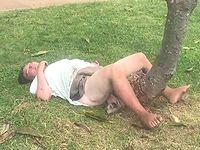 ハワイの公園で木とセックスしてるオバサンが目撃される...