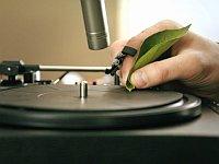 自然の音を使って音楽を作り出すアーティスト「Diego Stocco」