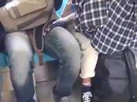 電車で目撃された新手の痴漢が可愛すぎるニャンwww